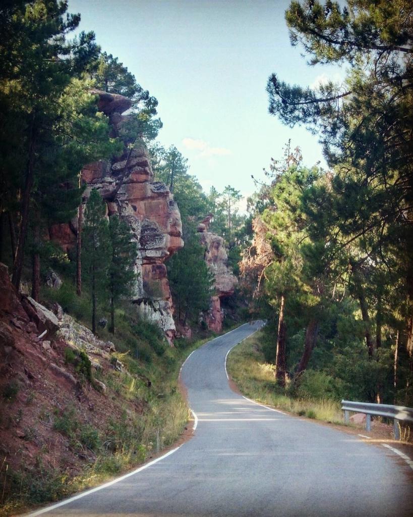 Viajar por Aragón – Pinares de Rodeno