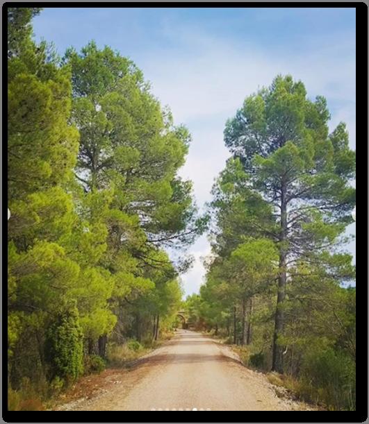 Via Verde – Val de Zafán
