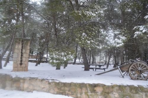 Arancha Rebullida Sierra (Santa Engracia)
